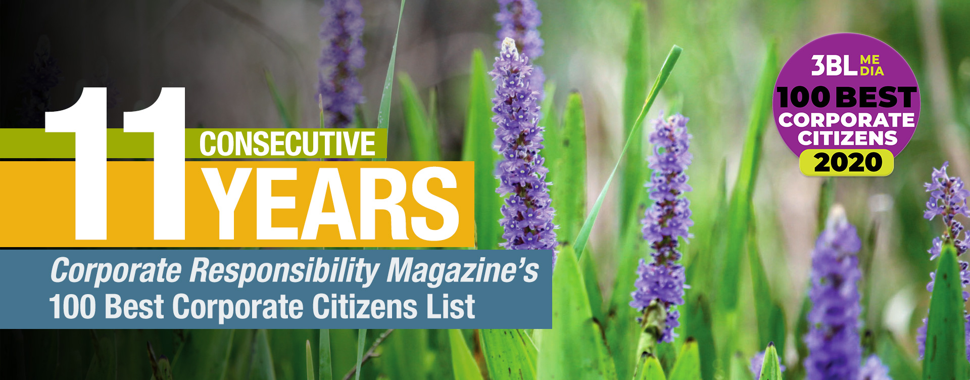 11 consecutive years on Corporate Responsibility Magazine's 100 Best Corporate Citizens List